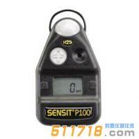 美国SENSIT P100单一气体检测仪