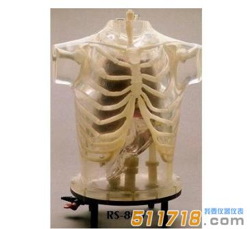 美国RSD ART Phantom胸部模体
