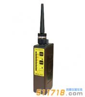 日本理研SP-210L便携式可燃气体检测仪