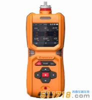 MS600-CH3Br便携式溴甲烷检测仪