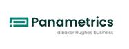 美国PANAMETRICS(泛美)仪器仪表