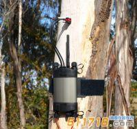 澳大利亚ICT SFM1 Sap植物茎流计